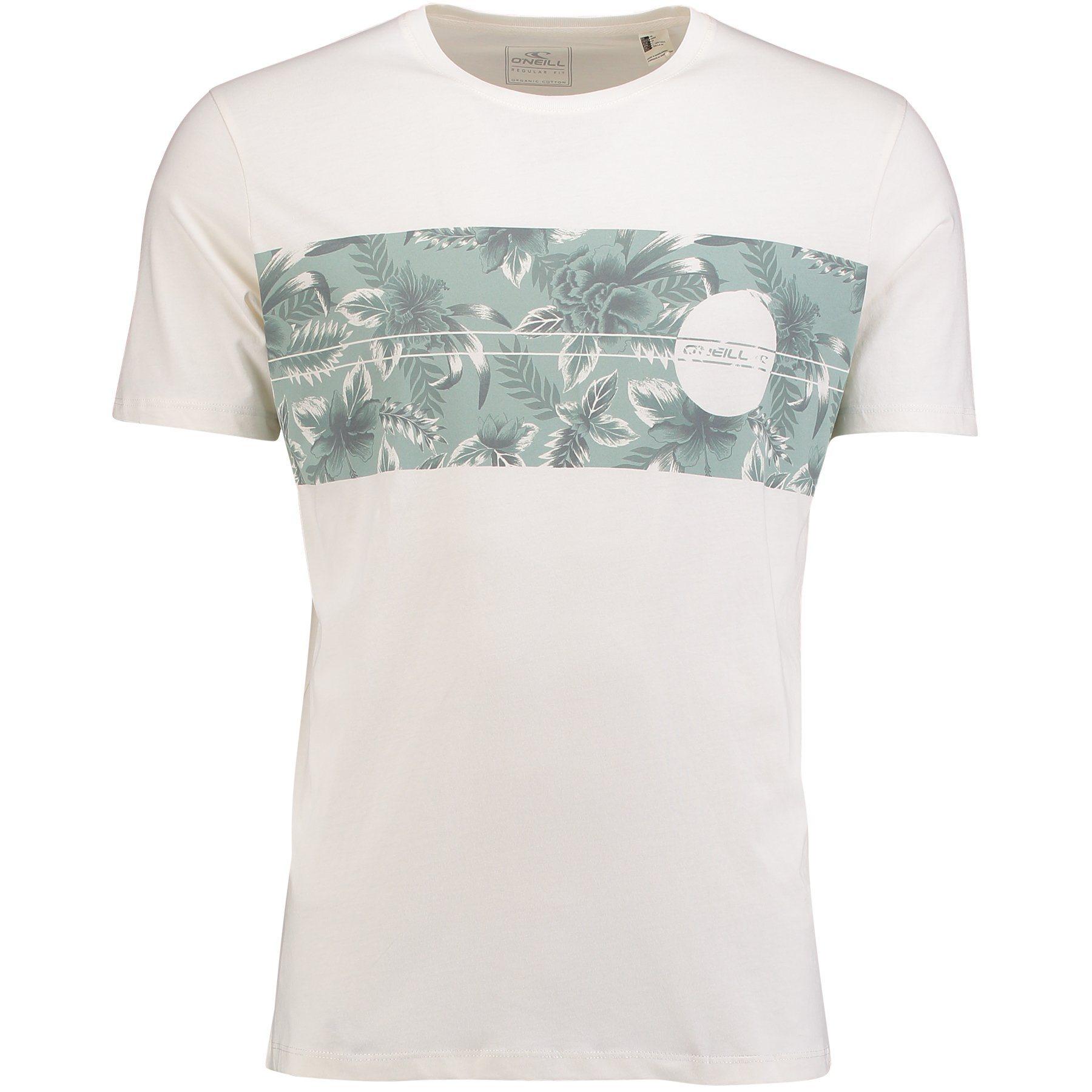 O´Neill T-Shirt kurzärmlig »Santa Cruz Panel«